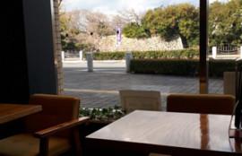 明石のお見合いカフェ